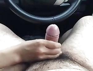 Blowjobs;Cumshots;Handjobs;Japanese jpn car bj